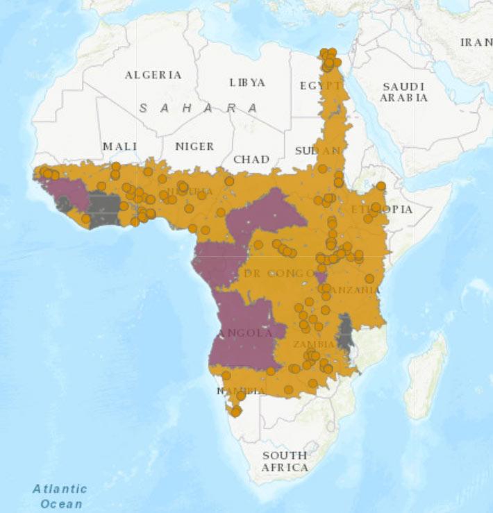 Carte de distribution de Pseudagrion nubicum, IUCN, https://www.iucnredlist.org/species/60028/85433445