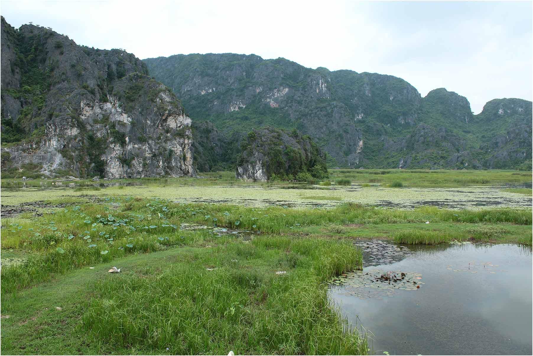 Biotope Van Long, Vietnam, 15 juin 2018